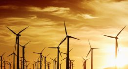 SECI's 1200 MW wind energy sale gets tepid response