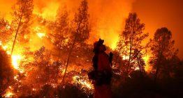 Alaska – Heatwave in Alaska is fuelling wildfires