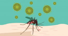 Malaria Cases – India is fourth in the World : Lancet report