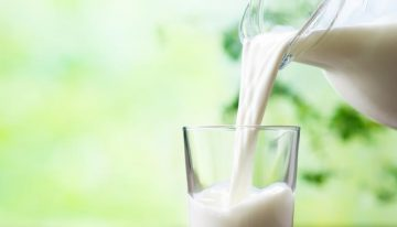 Carcinogen Aflatoxin detected in FSSAI milk survey samples