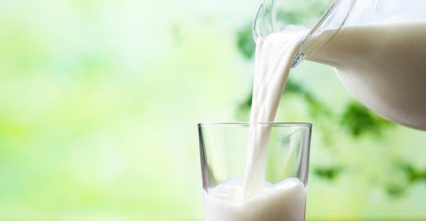 Carcinogen Aflatoxin detected in FSSAI milk survey samples