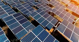 US cautions against lure of cheap Chinese solar imports